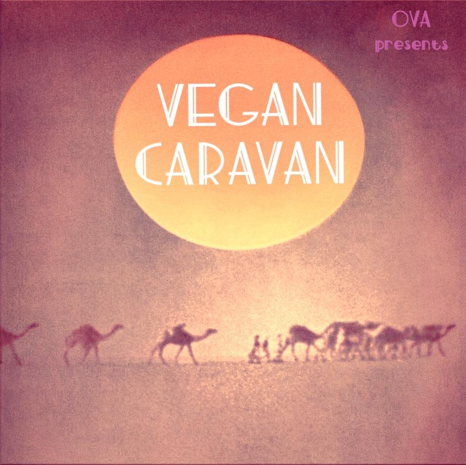 vegan,okinawa,vegancaravan